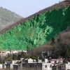 CHINA: Too expensive reforestation, let's paint mountain in green