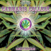 The Amsterdam Cannabis College