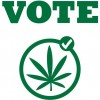 Marijuana legalization victories could be short-lived